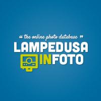 Lampedusanifoto - Foto di Lampedusa e Linosa