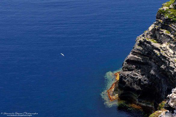 Lampedusa: la scogliera settentrionale - Foto di Giancarlo Bogoni per Lampedusainfoto
